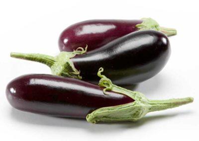 F-XF Italian Eggplant